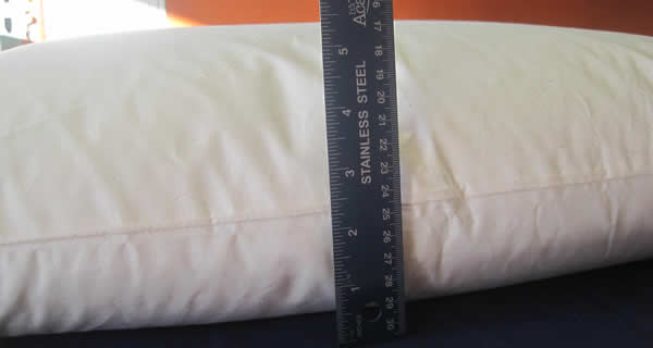 Organic Millet Hull Night Pillow